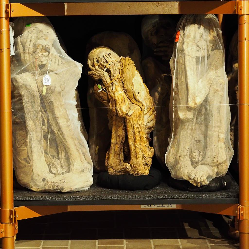 Momies au musée Leymebamba